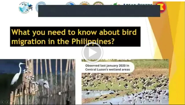 MU One with the World for Migratory Birds