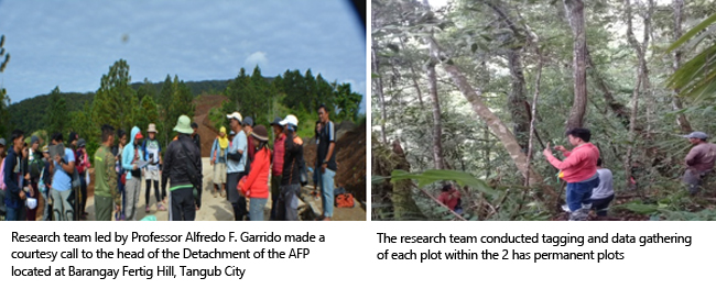 Misamis University Established Two Hectares Permanent Monitoring Plot in the Southern Part of Mt. Malindang Range Natural Park in Collaboration with DENR 10